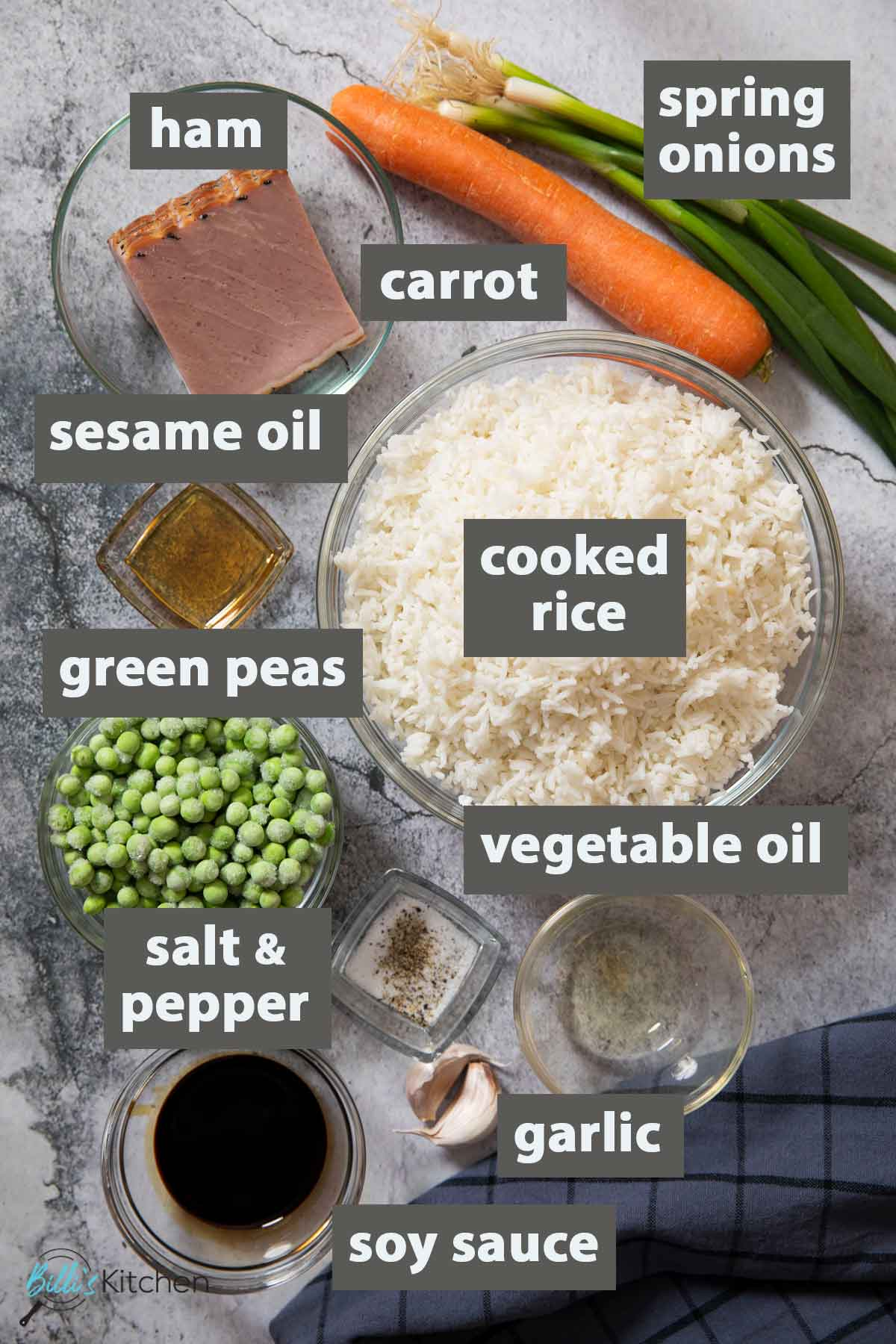 An image showing all the ingredients you need to prepare this easy ham fried rice recipe at home.